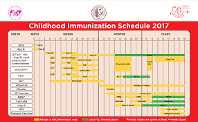 Blog Childhood Immunization Schedule For 2017 Bebejaz