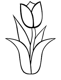 Small Picture Download Tulip Coloring Pages bestcameronhighlandsapartmentcom
