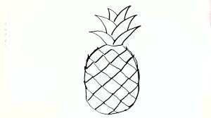 pineapple drawing. how to draw a pineapple- in easy steps for children. beginners pineapple drawing n