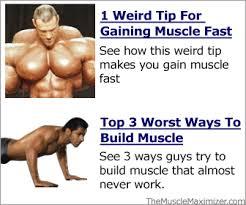 Bodybuilding Workout Chart For Men Pdf Old School Bodybuilding Pdf Diet Greenbergya
