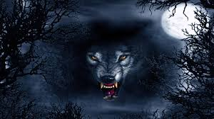 Wallpapers Hd 4k Wolf Wolf Wallpaperspro