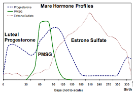 Idexx Progesterone Chart Equine Female Reproductive Testing Cornell University