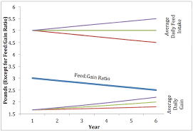 Feed Intake Growth And Feed Conversion What Does It All