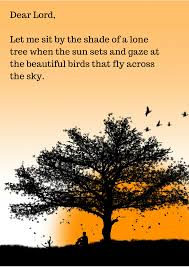 Beautiful Tree Quotes