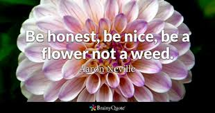 Beautiful Flower Quote Best Of Flower Quotes BrainyQuote