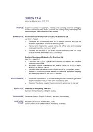 Business Development Manager Resume Resumes Skills Objective