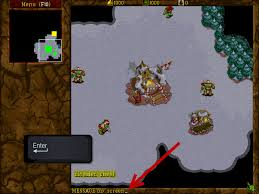 how to cheat at warcraft ii 5 steps with pictures wikihow