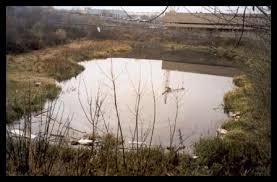 Очистка водоемов Методы очистки водоемов Проведение комплексных  восстановление водоема