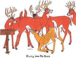 Image 18604 Bambi Faline Randy Muledeer