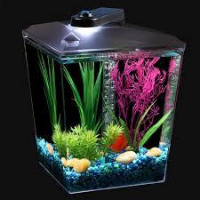 Aqua Culture 1 Gallon Aquarium Kit with LED Lighting & Filtration, 7.5
