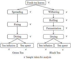 The Flow Chart Of Traditional Manufacturing Process Of Green