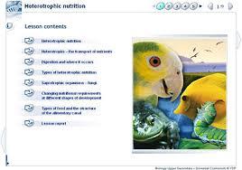 Biology Upper Secondary Ydp Class Activity Heterotrophic