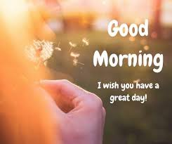 Good Morning Best Images 24 Best Good Morning Images Pics Collection Best Whatsapp Status 2