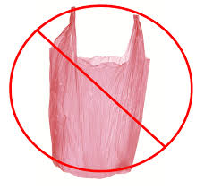 Image result for plastic bag ban