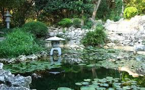 JPG  07 Japanese Garden pond.