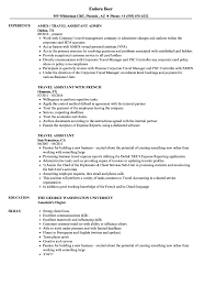 Travel Assistant Resume Samples Velvet Jobs