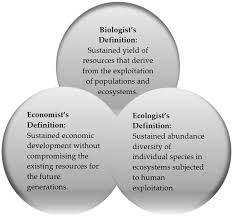 sustainability full text sustainable development factors  sustainability 08 00248 g001 1024