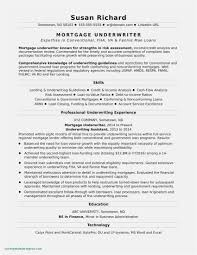 Free Collection 59 Office Resume Templates Simple Free