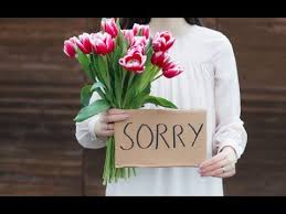 I Am Sorry QuotesAm Sorry Messages I Hurt You Reflections On Gorgeous Im Sorry Love Quotes