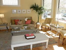 Interior:Cozy Chic Living Room Interior With Indoor Plant And Cream Paint  Color Cozy Chic