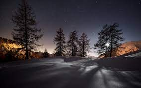 Winter Night HD Desktop Wallpapers ...