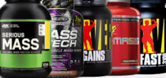 10 best weight gainers 2016 weight gainer supplements