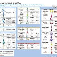 Asthma Medication Chart 2019 Benefits Of A Comprehensive Copd Inhaler Identification Aid