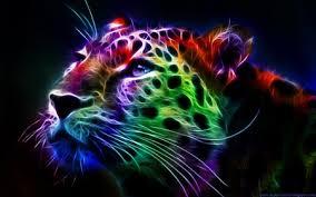 rainbow animal wallpaper. Contemporary Wallpaper RAINBOW LEOPARD  Cat Big Animal Fractal Throughout Rainbow Animal Wallpaper L