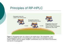 Hplc Principle Production Of Insulin Reverse Phase High Pressure Liquid