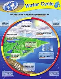 Teacher Created Resources Water Cycle Chart 7743