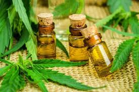 cannabinoid oil drug test