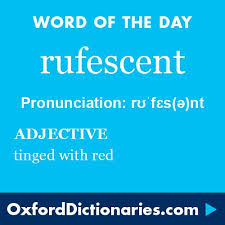 best favorite words images beautiful words rufescent adjective tinged red word of the day for 25