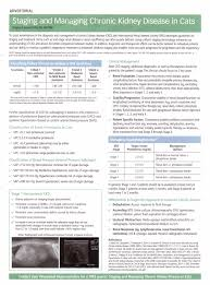 Entyce Dosing Chart Kidney Disease In Your Cat Or Dog Its Diagnosis And