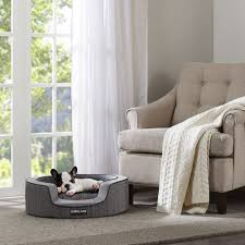 fancy dog beds furniture. Fancy Dog Beds For Large Dogs Costco B70d About Remodel Stunning Decorating Home Ideas With Furniture