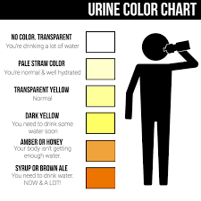 Dehydration Chart Urine Color Urine Color Chart What Color Is Normal What Does It Mean