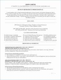 How To Create A Functional Resume Unique Functional Resume Format Example Simple Resume Examples For Jobs