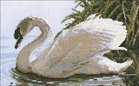 Amazon Com Riolis Female Swan Cross Stitch Kit