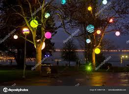 Light Month Trees Lights Geneva Switzerland Month December Trees Receive
