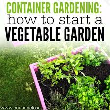container garden plans. how to container garden gardening start a vegetable growing vegetables in containers plans