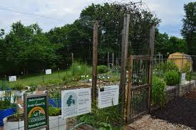 local government support for urban agriculture has contributed to its rise in wyandotte county image