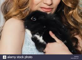 Perfect girl abd rabbit