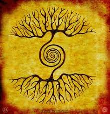 Image result for shamans tree