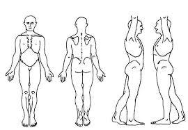 Body Chart Body Chart Bing Images Body Chart Health Chart