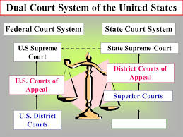 Dual Court Images Reverse Search