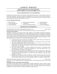 Client Relationship Executive Resume