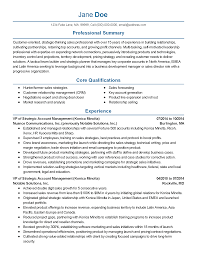 professional vice president of s templates to showcase your resume templates vice president of s