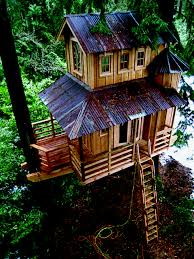 tree house plans for adults. Tree House Designs For Adults Plans S
