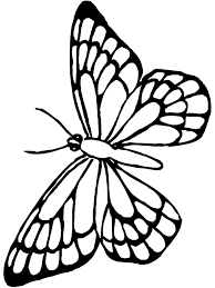 Have your child fill in the wings and petals with every color of the rainbow. Free Printable Butterfly Coloring Pages For Kids