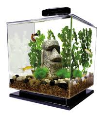 betta fish tanks. Wonderful Tanks Tetra Cube Betta Fish Tank Inside Tanks