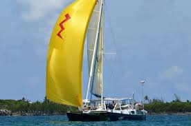 Image result for bazinga catamaran